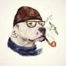 kitnakrane's avatar