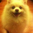 kayanlala5's avatar