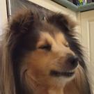 jdanger888's avatar