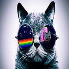 city08's avatar