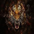 damion15's avatar