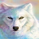 saraallenblochinger's avatar