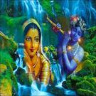 shahnaaz's avatar
