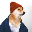 oskargreig's avatar