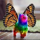 monicasantoro's avatar