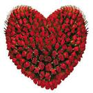 dennis11112's avatar