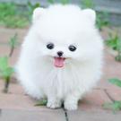 138905's avatar