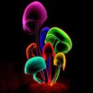daftsa9908's avatar