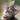 maddieb's avatar