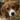 kassidy's avatar