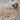 cailey1227's avatar