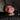 daylenmbelle1009's avatar