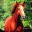aismail21's avatar