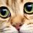fonzierox's avatar