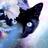 thegingarkitty's avatar