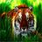 brianjustin3709's avatar
