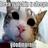 fabgirl's avatar