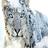 johanna12's avatar