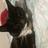 catz4life's avatar