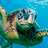 turtles4life's avatar