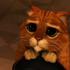nickplant100's avatar