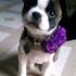 leticia_lopez22's avatar