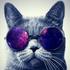 cassieg847's avatar