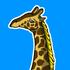 jamietaylor's avatar