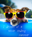 Poster: I dream of a