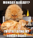 Poster: MONDAY ALREADY? I'M STILL EATING MY SUNDAY ROAST