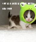 #nice#cute