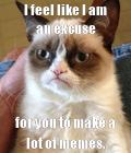 #GrumpyCatMeme