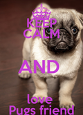 #love and help pugs friend