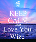 i will always love you Wize