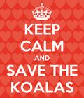 Help stop madness against koalas