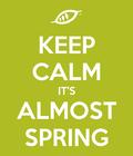 #primavera #voglioaprirelapiscina #vogliadisole #lavoroingiardino #sciabolataartica #sognolestate