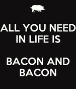 ALL YOU NEED IN LIFE IS  BACON AND BACON