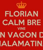 FLORIAN CALM BRE VINE UN VAGON DE MALAMATINA