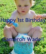 Happy 1st Birthday   Cameron Wade!!