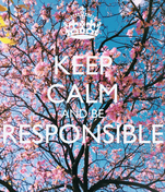 KEEP CALM AND BE RESPONSIBLE