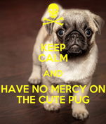 KEEP CALM AND HAVE NO MERCY ON THE CUTE PUG