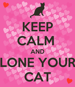 KEEP CALM  AND LONE YOUR CAT