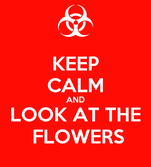 KEEP CALM AND   LOOK AT THE      FLOWERS