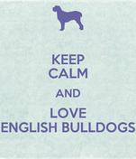 KEEP CALM AND LOVE ENGLISH BULLDOGS