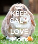 KEEP CALM AND LOVE  Moco
