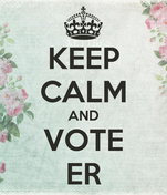 KEEP CALM AND VOTE ER