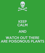 KEEP CALM AND WATCH OUT THERE ARE POISONOUS PLANTS