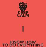 KEEP CALM I KNOW HOW TO DO EVERYTHING