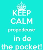KEEP CALM propedeuse  in de the pocket!
