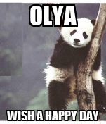 OLYA WISH A HAPPY DAY